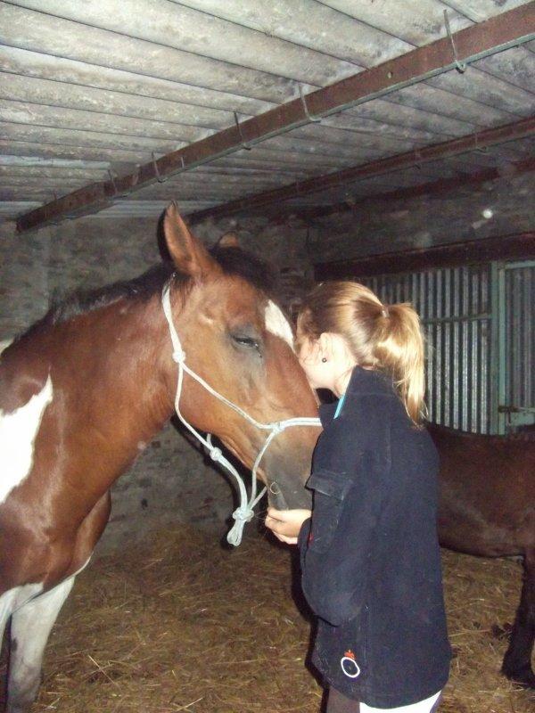 Ai confiance en ton cheval & lui aura confiance en toi. ♥