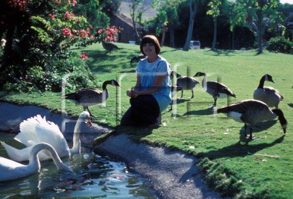 Mireille Mathieu visite 'Lion Country Safari', réserve d'animaux sauvages en Floride, en août 1978 à lrvine, Etats-Unis