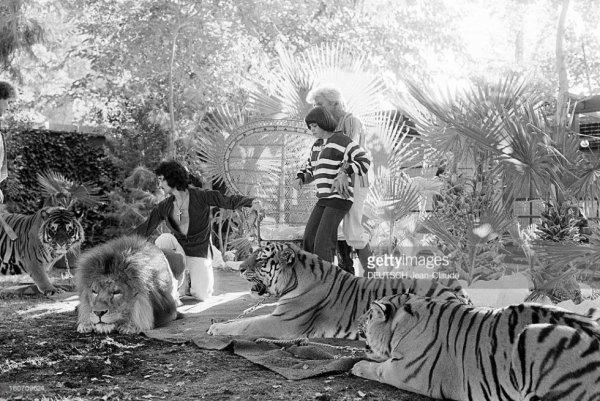 Mireille Mathieu avec les magiciens Siegfried et Roy