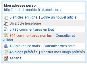 06 Article : Mon blog