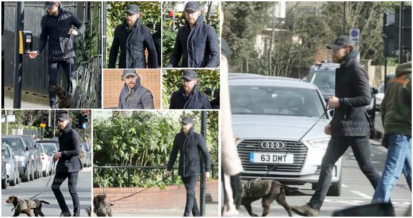 11.02.2018 : Tom Hiddleston était de sortie promenade avec son petit chien Bobby dans la ville de Londres