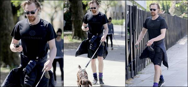 19 Mai 2018 : Tom Hiddleston a été aperçu se promenant avec son chien Bobby dans le nord de Londres