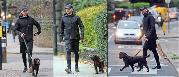 27.11.2018 : Tom très souriant a été de nouveau aperçu promenant son chien Bobby qui a bien grandi à Londres