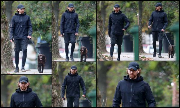 20.12.2018 :  Tom Hiddleston a été aperçu promenant son petit chien Bobby dans les rues de Londres
