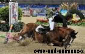 Le dopage de chevaux.