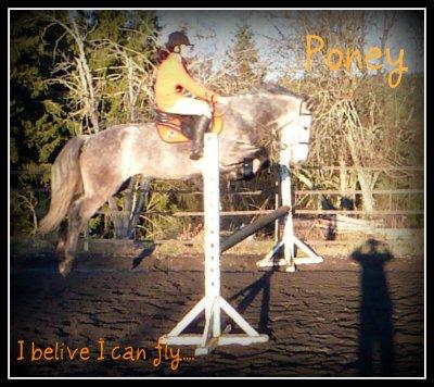 Ce poney me vend du rêve  ......