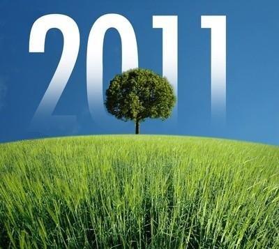 Meilleurs Voeux pour 2011!!!