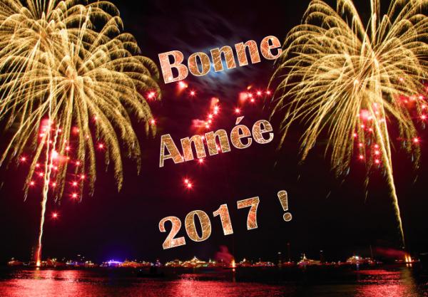 je vous souhaite bonne année et bonne santé 2017 à tous le monde