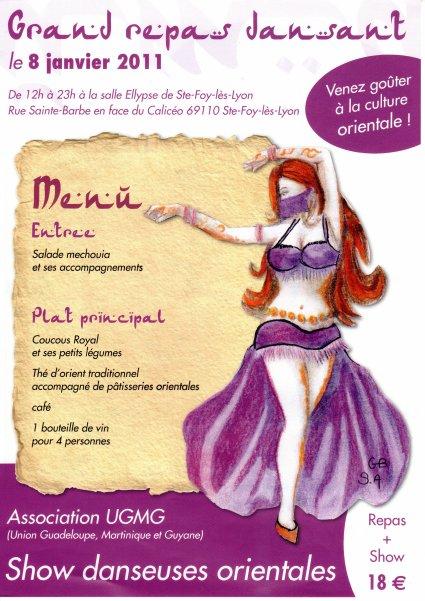 """DANCE SHOW """"ASHAANTY PROJECT"""" - Cie Ode Izis à Ste Foy les lyon le 8 janvier 2011"""