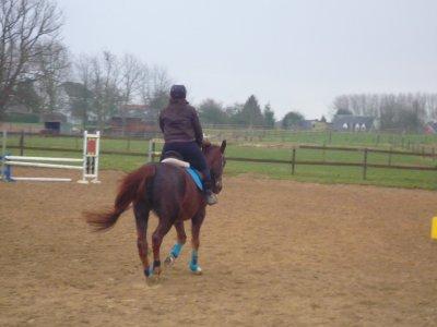 On a tendance, de nos jours, à oublier que l'équitation est un art. Or l'art n'existe pas sans amour ... !