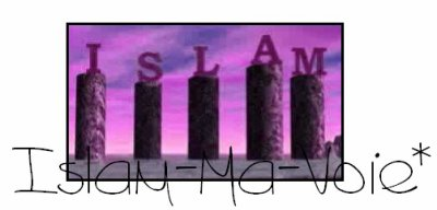 Bismillahi Rahmani Rahime [ بسم الله الرحمن الرحيم ] . Les 5 piliers de l'Islam .