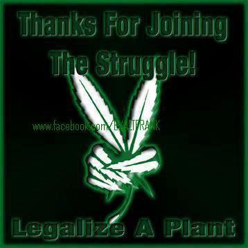 marijuana is life