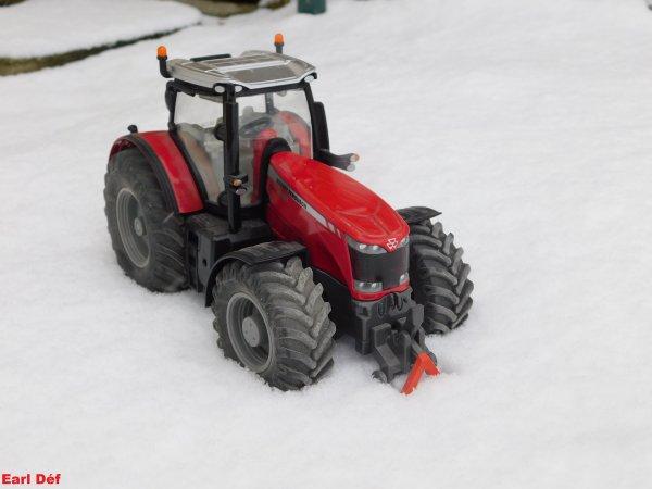 Un Bull dans la neige en Picardie