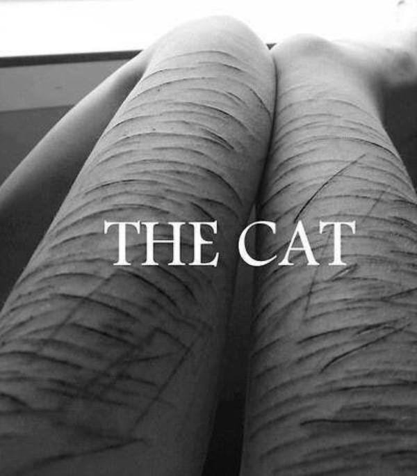The Cut... ♥