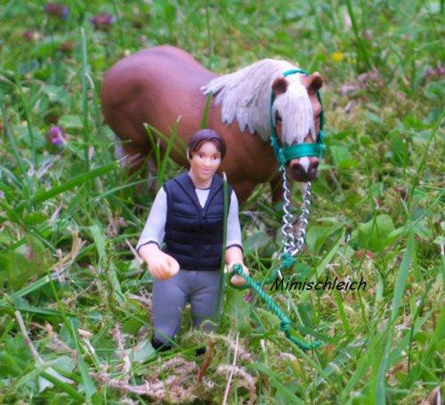 pour schleich-de-la-fontaine : libre ! j'ai choisi ballade d'un poney en longe comme thème.