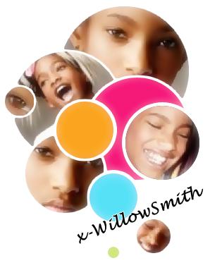 Jay Z va écrire une comédie musicale pour Willow Smith !
