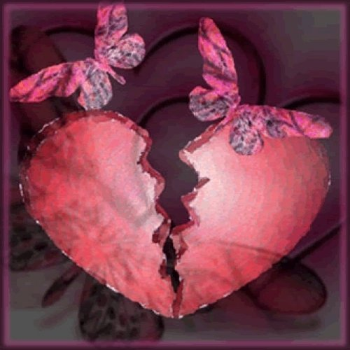 Verstand und Herz
