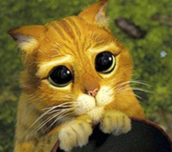 QUI PEUT ME FAIRE DE LA PUB ?? svp svp svp svp svp svp please please please please please please <3<3<3<3<3<3