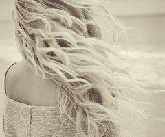 Le vent emporte tout sauf les sentiments ...