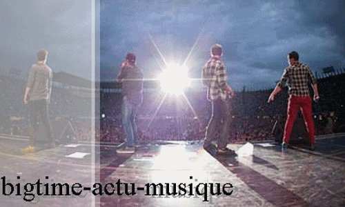 Big time rush au Mexique photos