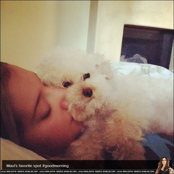 Découvrez la dernière photo instagram postée par Ashley.