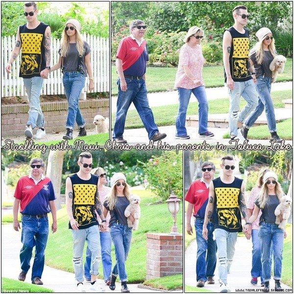 26.08.2013 - Ashley se promenant avec Maui, Chris et les parents de celui-ci dans Toluca Lake.