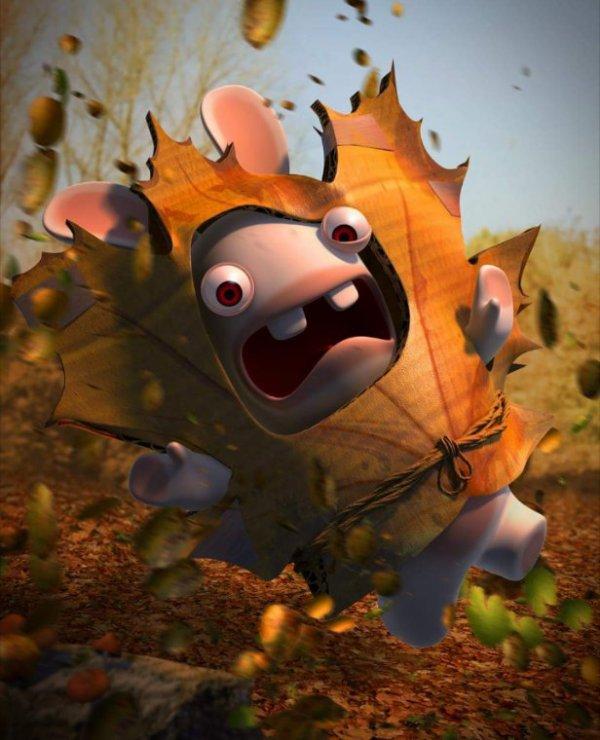 Bon... Bin c'est l'automne !