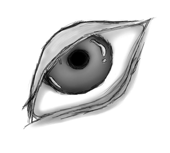 Oeil (N&B)