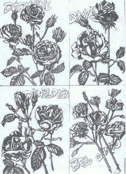 Des roses en fusion