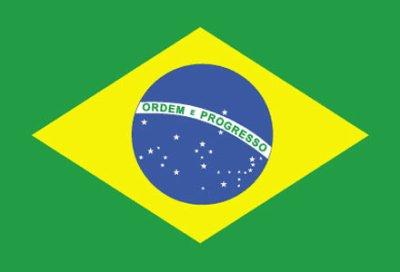 voila le drapeau bresillien