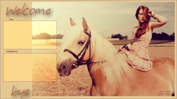 Fiche 27: Cheval & fille dans la campagne