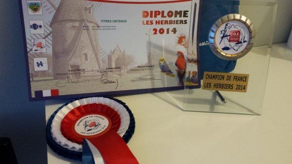 RETOUR DU CHAMPIONNAT DE FRANCE