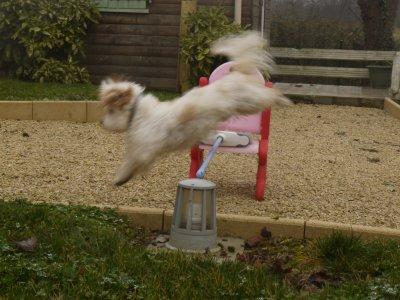 Nos sauts d'entraînements