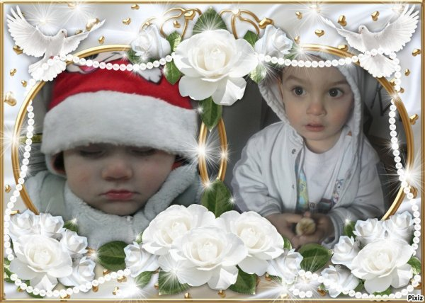 mes 2 amours