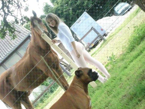 L'amour entre un humain et le cheval