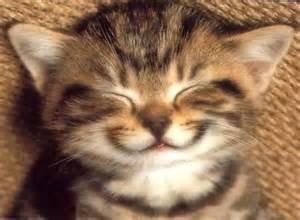 Enfin quelques sourires !