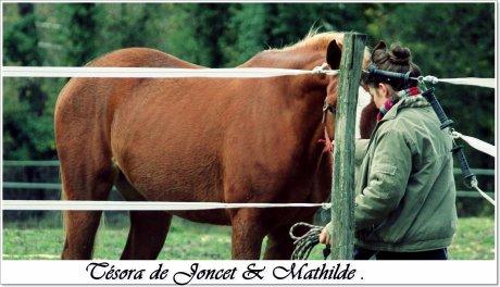 Tésora de Joncet  & Mathilde ..♥
