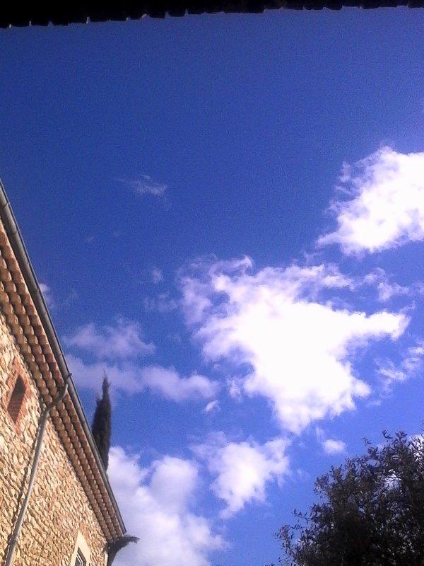 Ciel bleu,grand soleil,douce chaleur... Que demander de plus !