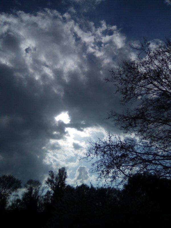 Faux jour a contre jour ... Vrai grand soleil... Hé hé hé !!!