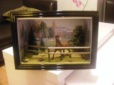 """VITRINE """"cheval dans sa prairie"""""""