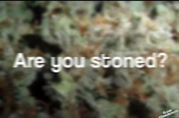 Are you stoned?