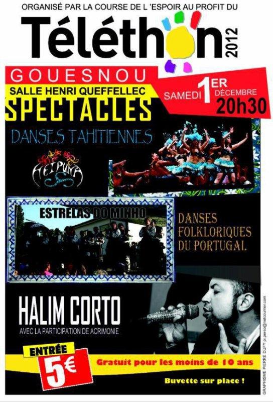 Samedi 1er Décembre 2012 - Téléthon à l'espace Henri Queffelec à Gouesnou
