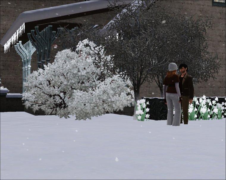 17. C'est l'hiver