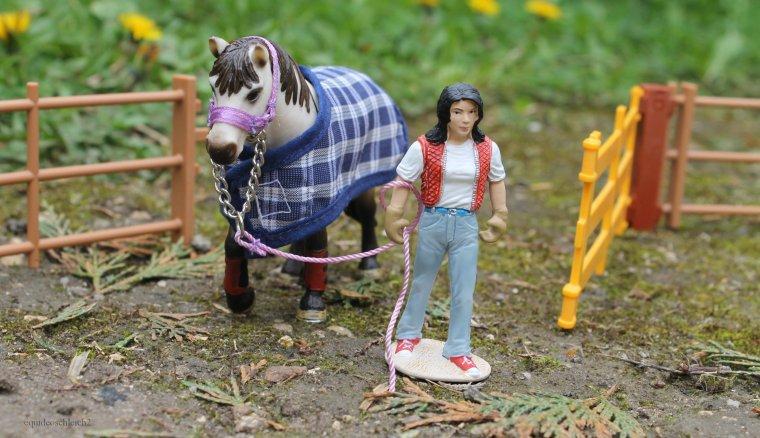 Un cheval pour Anaïs