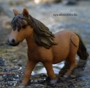 Photo de equideoschleich2