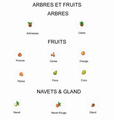 Arbres & Fruits