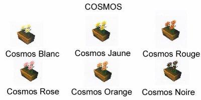Les Cosmos
