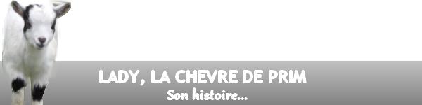 L'HISTOIRE DE LADY