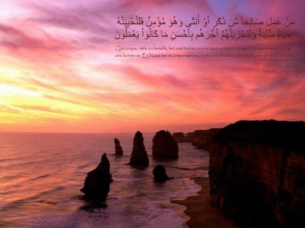Hamza Ibn Abdel Muttalib