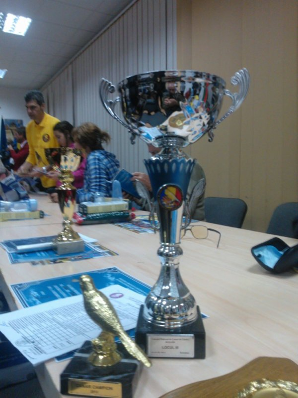 cup for third place on national harz roller contest 2013